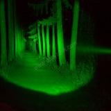 Armytek Doberman Green — обзор подствольного фонаря для охоты с зеленым светом