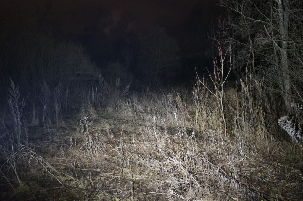 Тест освещения фонарем Acebeam H10 в полевых условиях