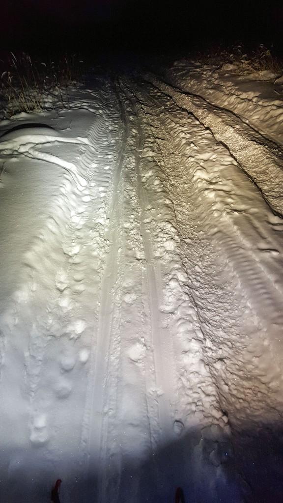 Сравнение освещения теплого и холодного света фонаря для беговых лыж
