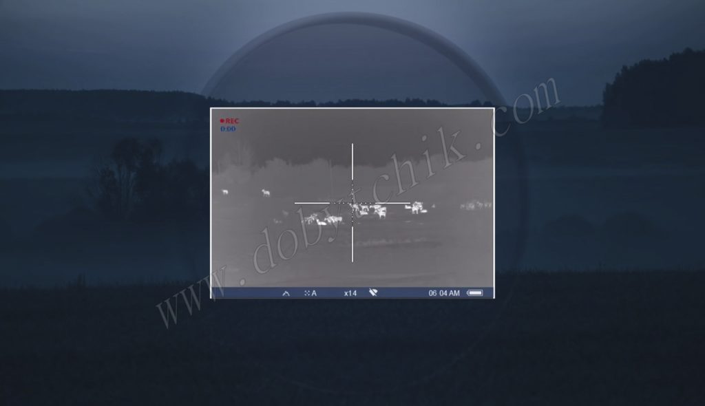 Четкая картинка тепловизионного прицела Pulsar Trail XP/XQ