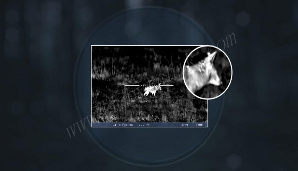 Картинка тепловизора-прицела Pulsar Trail XP/XQ лишена цифрового шума