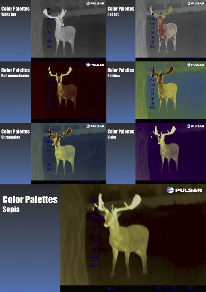 Семь цветовых схем отображения изображения тепловизора Pulsar Quantum XQ50